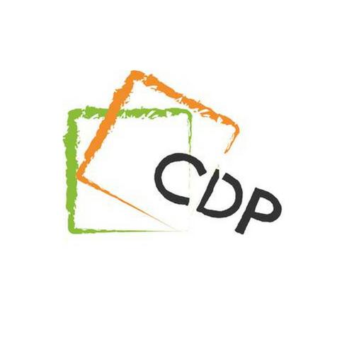 Comité pour le Développement et le Patrimoine (CDP)